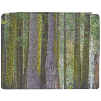 USA, California. Moss Covered Tree Trunks iPad Cover