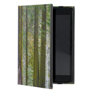 USA, California. Moss Covered Tree Trunks iPad Mini Cover