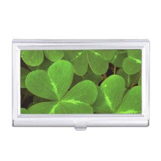 USA, California, Muir Woods. Close-up of clover Business Card Holder