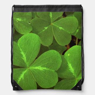 USA, California, Muir Woods. Close-up of clover Drawstring Bag