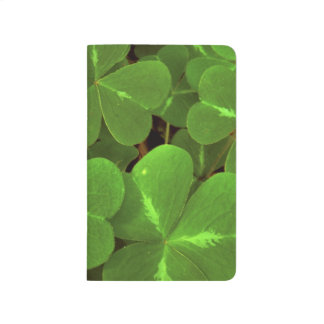 USA, California, Muir Woods. Close-up of clover Journal