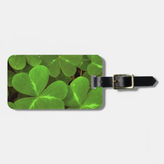 USA, California, Muir Woods. Close-up of clover Luggage Tag