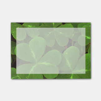 USA, California, Muir Woods. Close-up of clover Post-it Notes