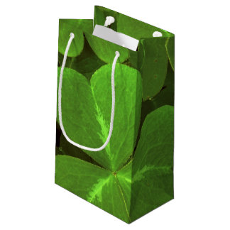 USA, California, Muir Woods. Close-up of clover Small Gift Bag