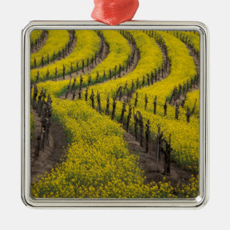 USA, California, Napa Valley, Los Carneros Ava. Christmas Ornament