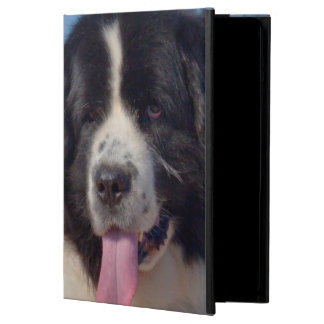 USA, California. Newfoundland Lying In Sand Cover For iPad Air