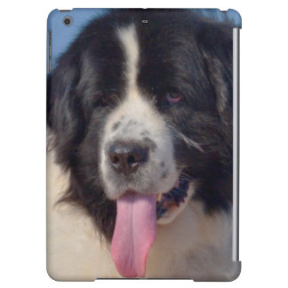 USA, California. Newfoundland Lying In Sand iPad Air Cover