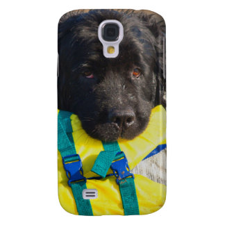 USA, California. Newfoundland With Life Vest Galaxy S4 Case