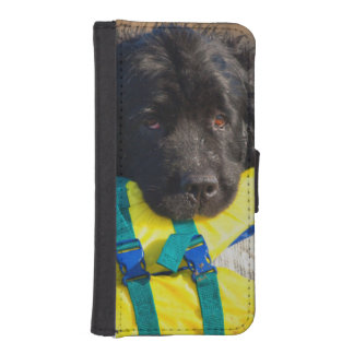 USA, California. Newfoundland With Life Vest iPhone SE/5/5s Wallet Case