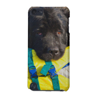 USA, California. Newfoundland With Life Vest iPod Touch (5th Generation) Case