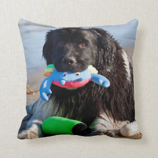 USA, California. Newfoundland With Toy In Mouth Throw Pillow
