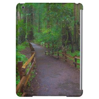 USA, California. Path Among Redwoods