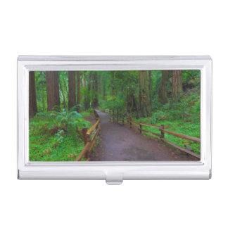 USA, California. Path Among Redwoods Business Card Holder
