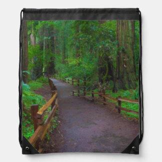 USA, California. Path Among Redwoods Drawstring Bag
