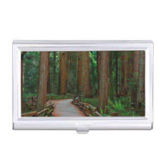 USA, California. Path Among Redwoods In Muir Business Card Holder