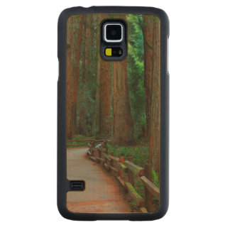 USA, California. Path Among Redwoods In Muir Carved Maple Galaxy S5 Case