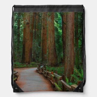 USA, California. Path Among Redwoods In Muir Drawstring Bag