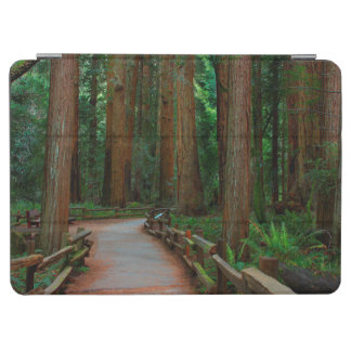 USA, California. Path Among Redwoods In Muir iPad Air Cover