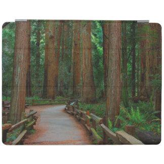 USA, California. Path Among Redwoods In Muir iPad Cover