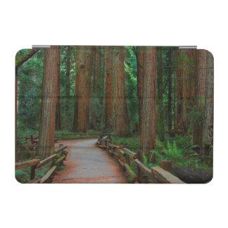 USA, California. Path Among Redwoods In Muir iPad Mini Cover