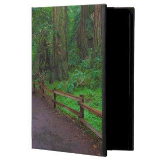 USA, California. Path Among Redwoods iPad Air Covers