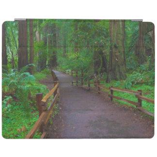 USA, California. Path Among Redwoods iPad Cover
