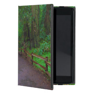 USA, California. Path Among Redwoods iPad Mini Case