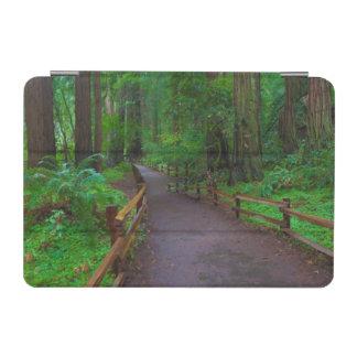 USA, California. Path Among Redwoods iPad Mini Cover