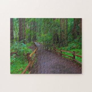 USA, California. Path Among Redwoods Jigsaw Puzzle