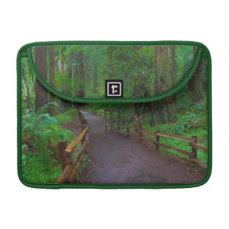USA, California. Path Among Redwoods Sleeve For MacBook Pro