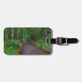 USA, California. Path Among Redwoods Tag For Luggage