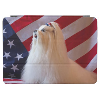 USA, California. Patriotic Maltese iPad Air Cover