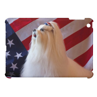 USA, California. Patriotic Maltese iPad Mini Cover