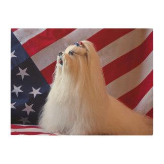 USA, California. Patriotic Maltese Wood Print