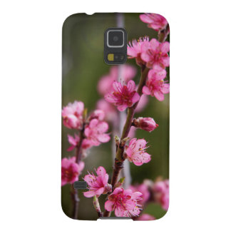 USA, California. Pink Blooms On A Tree Case For Galaxy S5