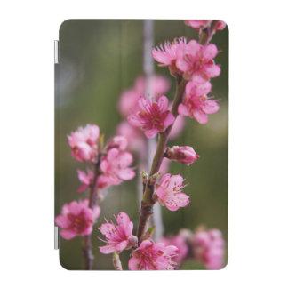 USA, California. Pink Blooms On A Tree iPad Mini Cover