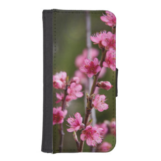 USA, California. Pink Blooms On A Tree iPhone SE/5/5s Wallet Case