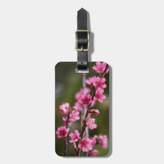 USA, California. Pink Blooms On A Tree Luggage Tag