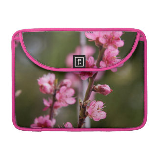 USA, California. Pink Blooms On A Tree Sleeve For MacBooks