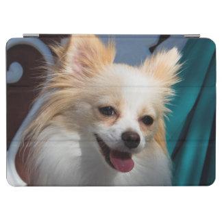 USA, California. Pomeranian Portrait iPad Air Cover