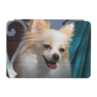 USA, California. Pomeranian Portrait iPad Mini Cover