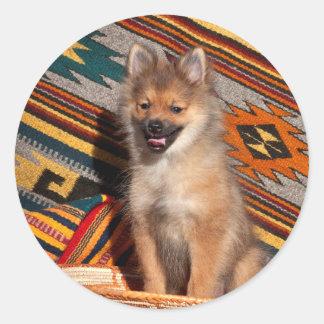 USA, California. Pomeranian Sitting Classic Round Sticker