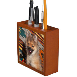 USA, California. Pomeranian Sitting Desk Organiser