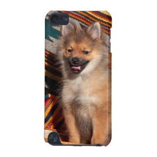 USA, California. Pomeranian Sitting iPod Touch 5G Case
