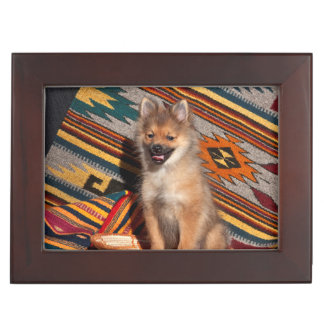 USA, California. Pomeranian Sitting Keepsake Box