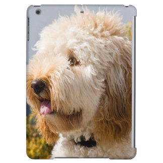 USA, California. Portrait Of Labradoodle 3 Case For iPad Air