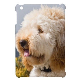USA, California. Portrait Of Labradoodle 3 Case For The iPad Mini