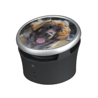 USA, California. Portrait Of Leonberger Sitting Bluetooth Speaker