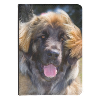 USA, California. Portrait Of Leonberger Sitting Kindle Touch Case