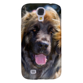 USA, California. Portrait Of Leonberger Sitting Galaxy S4 Case
